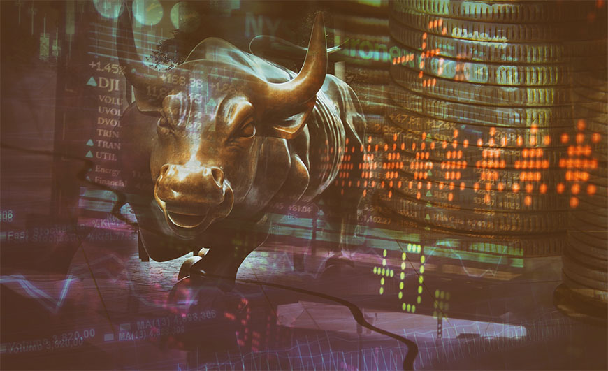 trade bull